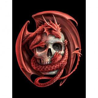 Carte postale Effets 3D à dragon rouge et crane humain - Anne Stokes