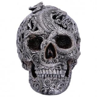 Crâne à fresque draconique - 19.5cm