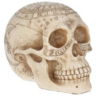 "Crane humain déco ""Astrological Skull"" - Nemesis Now"