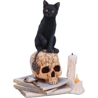 """Figurine chat noir sur un crane """"Esprits de Salem"""""""
