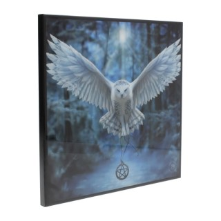 "Image plexy déco à chouette blanche ""Awaken Your Magic"" - 25cm - Anne stokes"