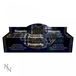"""Paquet de 20 bâtonnets d'encens senteur Jasmin """"Prospérité""""- Lisa Parker"""