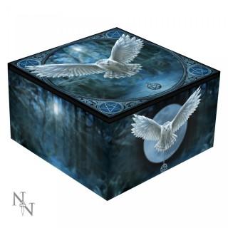 Petite boite Miroir bleue chouette blanche - Anne stokes