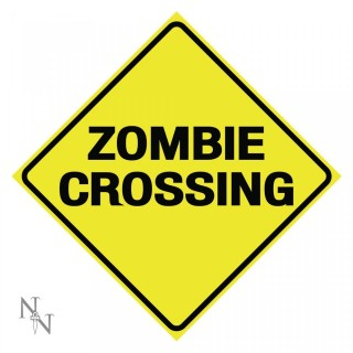 Plaque déco Zombie Crossing - 30cm