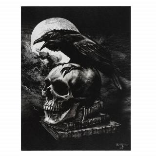 Toile canevas à corbeau sur crane humain - Alchemy (19x25cm)