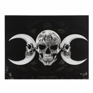 Toile canevas à Cranes lunaires - Alchemy (19x25cm)